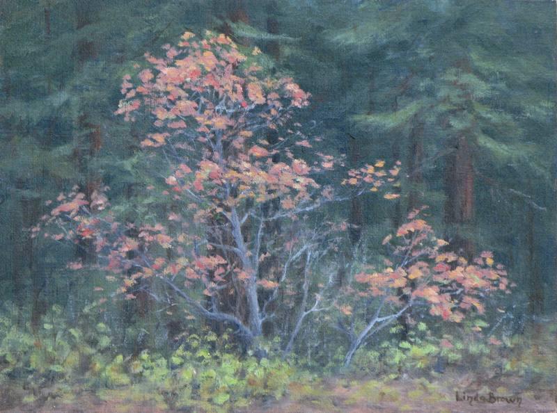Autumn-Dogwood-9X12.jpg