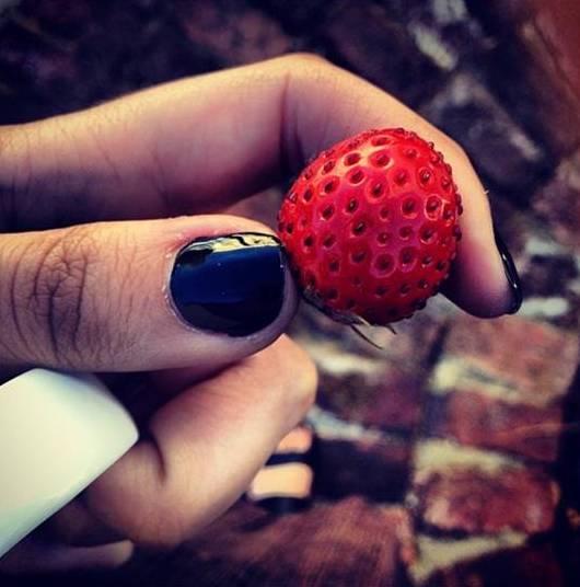 garden-strawberry.jpg