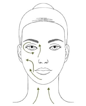 How to perform Ayurvedic face massage - massage direction.