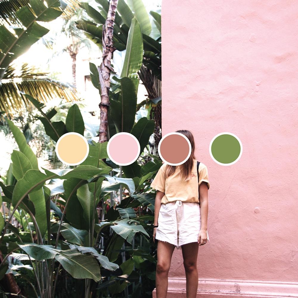 Colour-01.png