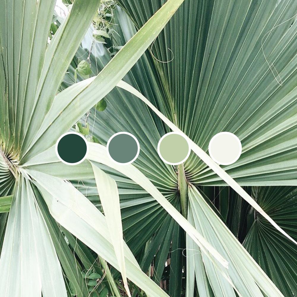 Colour-09.png