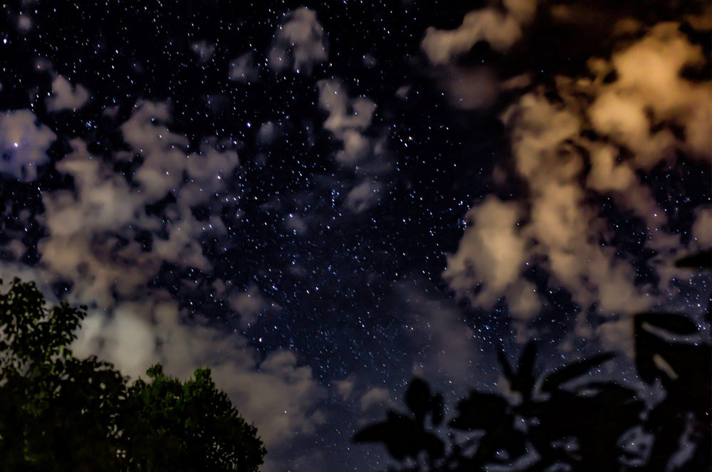 night sky low res_jessica brennan.jpg