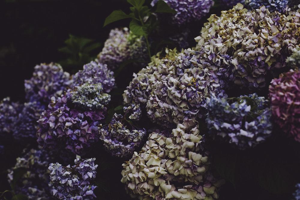 flowers_facebook_jessicabrennan.jpg