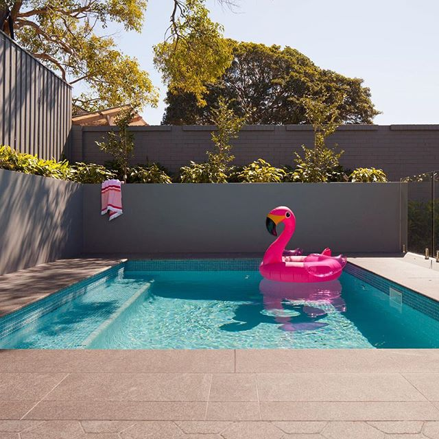 Our Drummoyne Residence is the perfect place to relax on Boxing Day.  #boxingday #christmas #holidays #interiordesign #interior #design #landscaping #pool #swan #relax #styling #decor #instastyle #inspo #granite #pavers #summer #sydney @surfacegalleryaustralia 📷 by @sissy_reyes