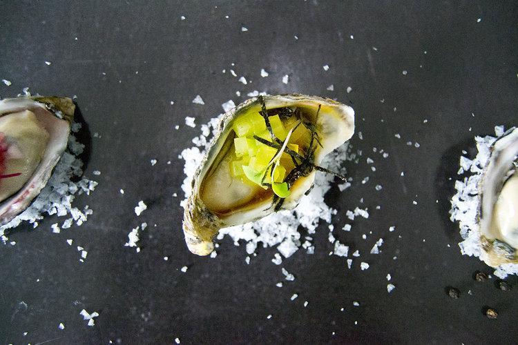 oyster 4.jpg