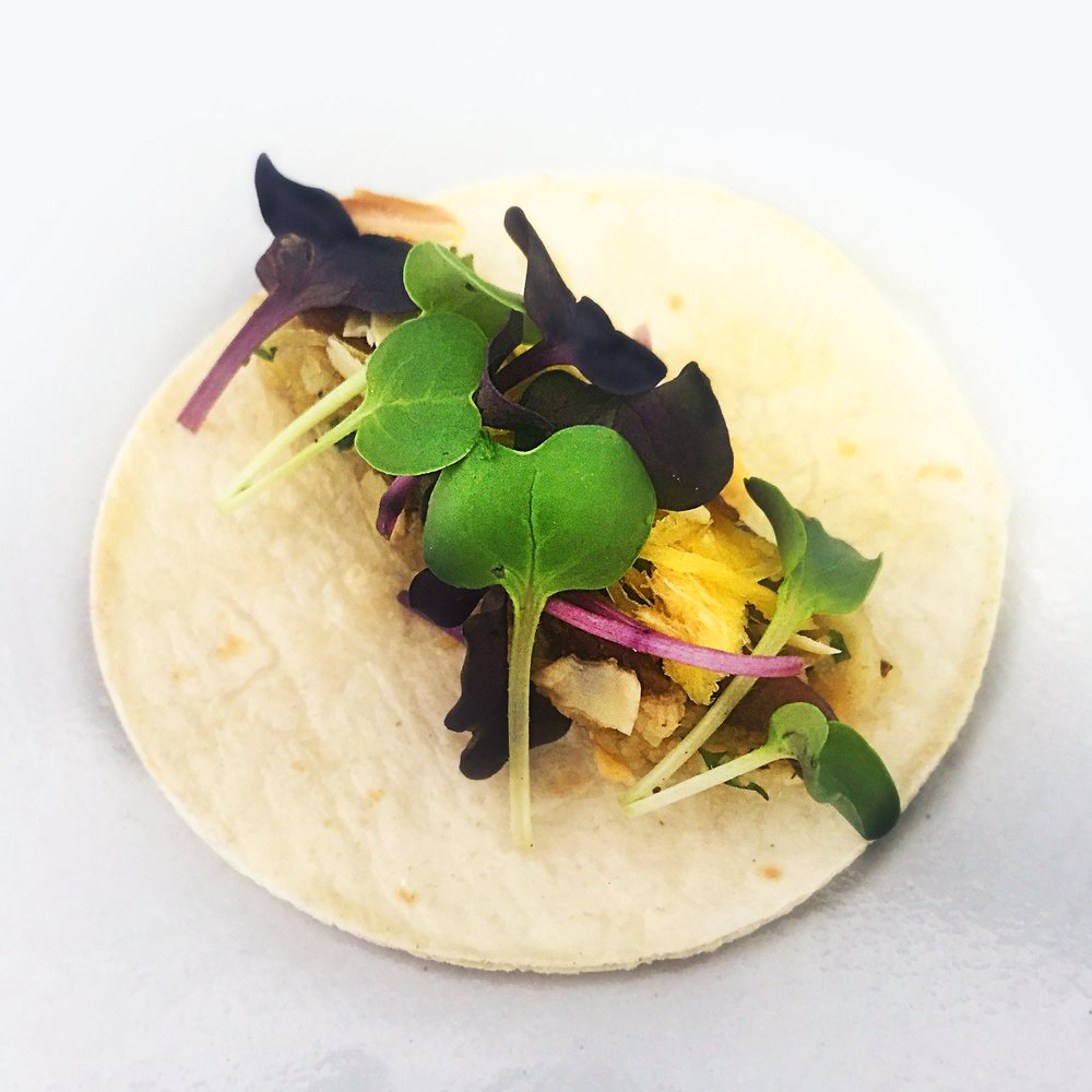 pulled chicken mini taco