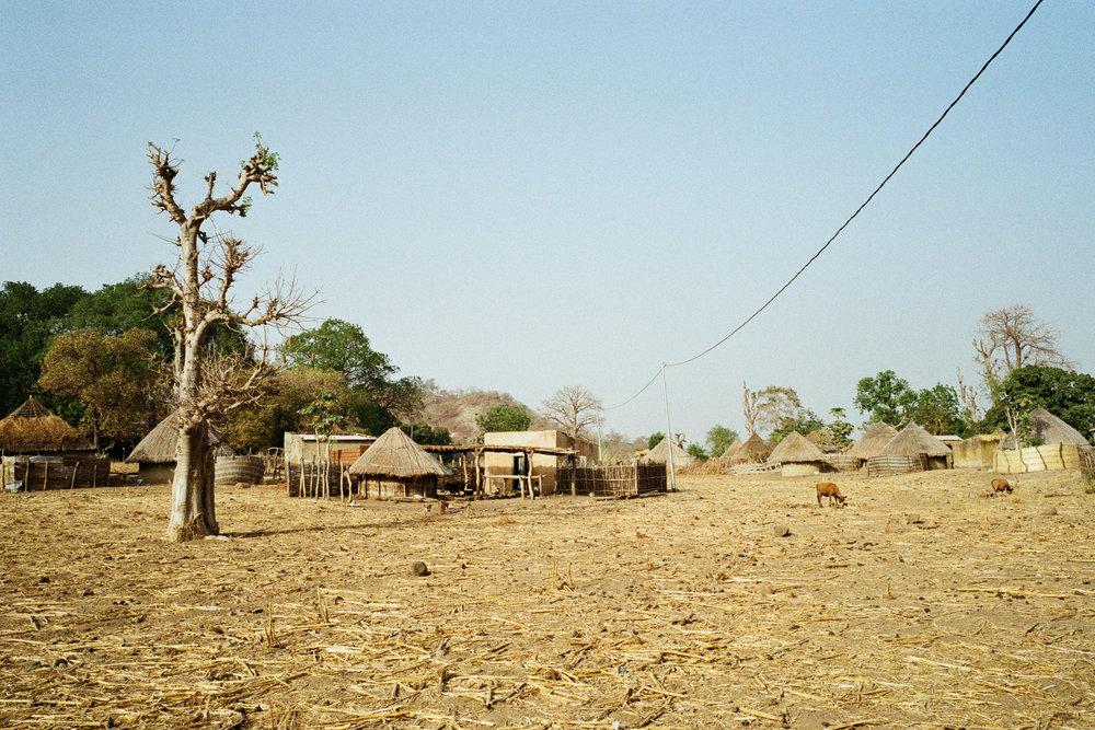 3.bassari-country-senegaljpg.jpg