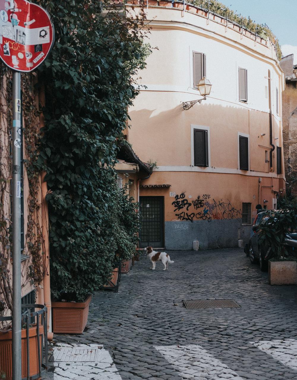 guia de roma tres dias que ver en roma