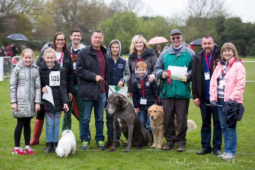 142-of-385-Paws-In-The-Park-Bramhall-2016-I-love-cheadle-hulme-I-love-bramhall-chelsea-shoesmith-photography_.jpg