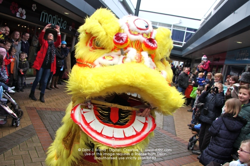 Dzinr_Bramhall_Chinese_New_Year_Lion_0272.jpg