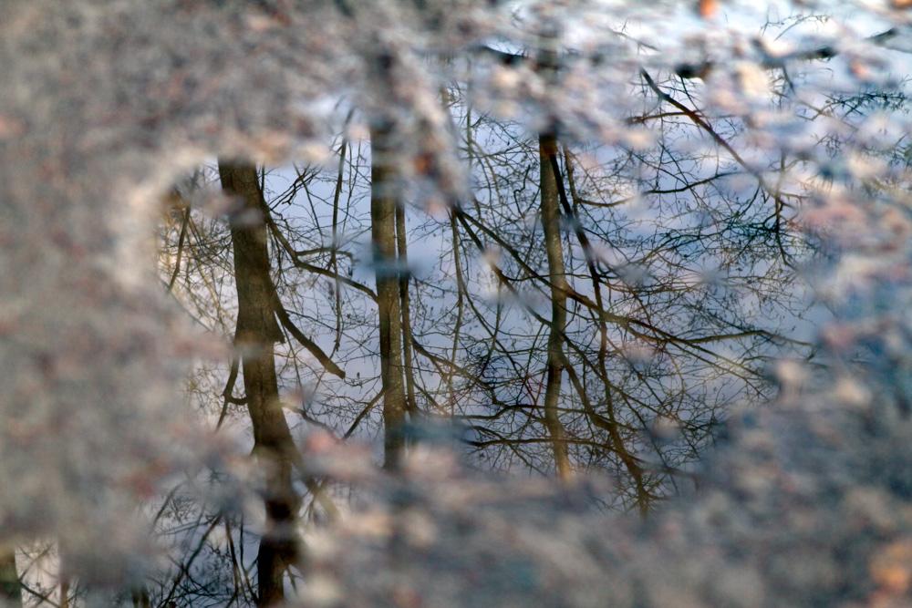 river-2.jpg