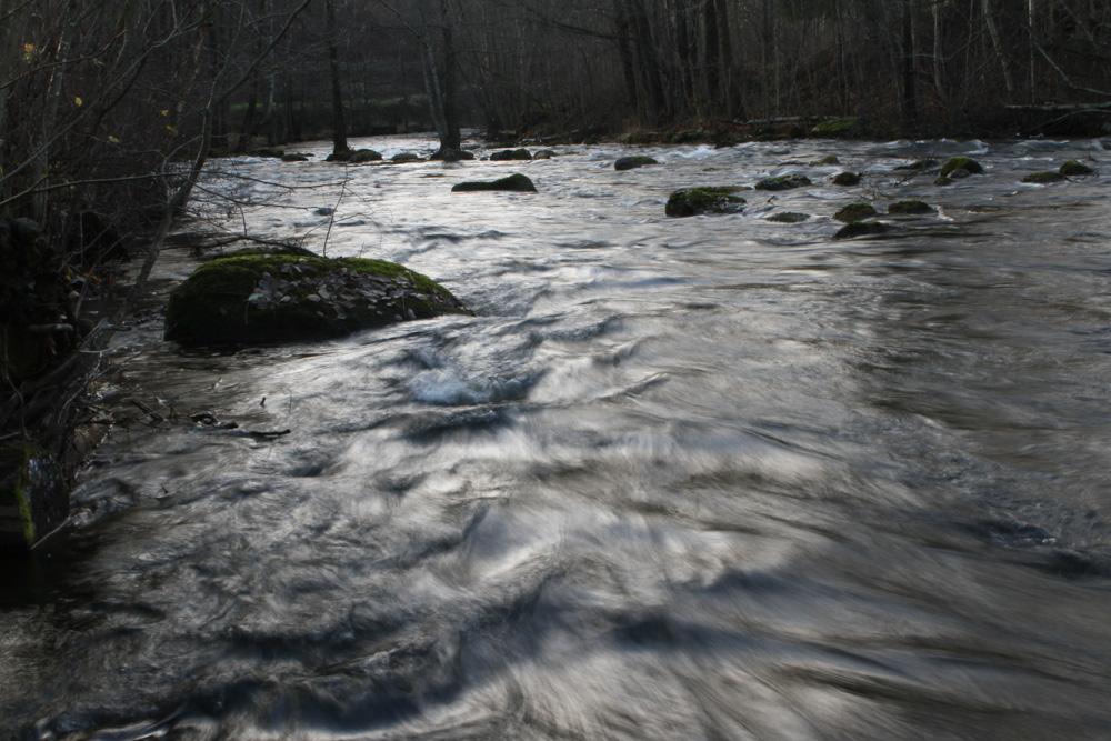 river-9.jpg