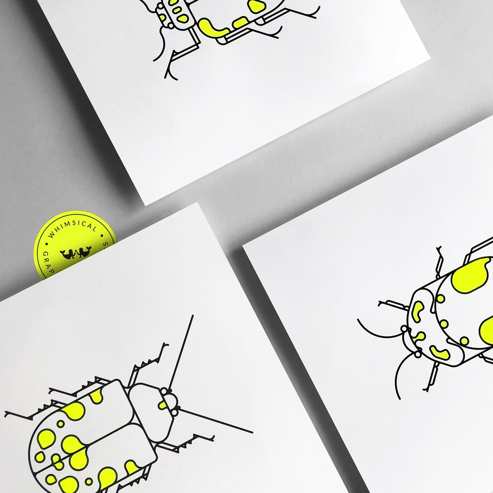 $30 + SHIPPING COLEOPTERA BEETLES | NEON YELLOW