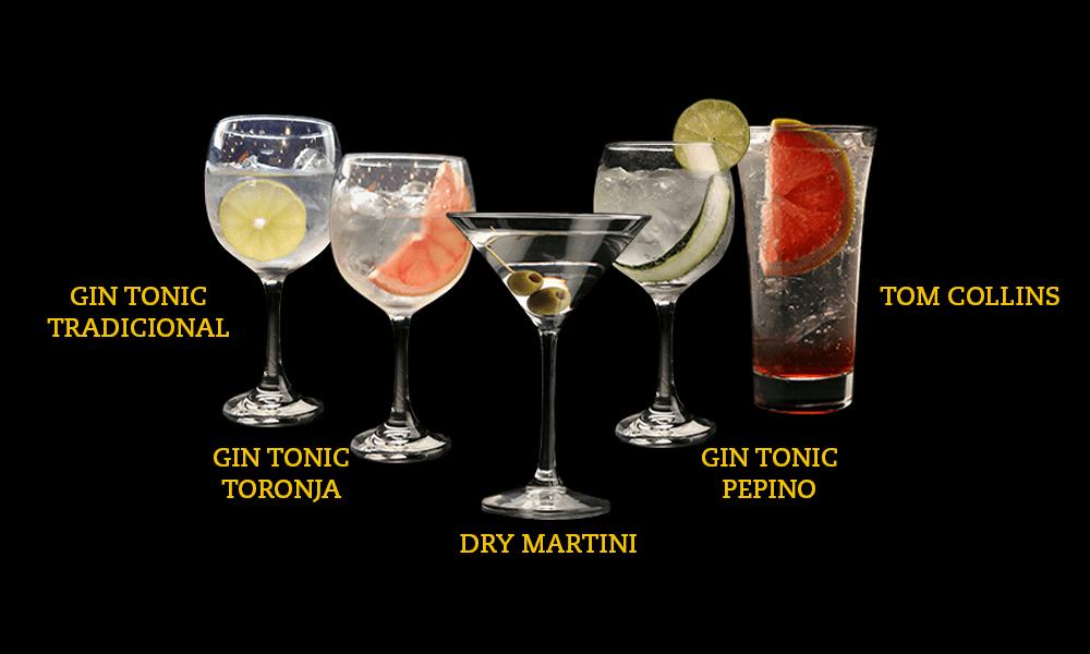beer dry gin tonic tradicional, gin tonic toronja, dry martini, gin tonic pepino, tom colllins