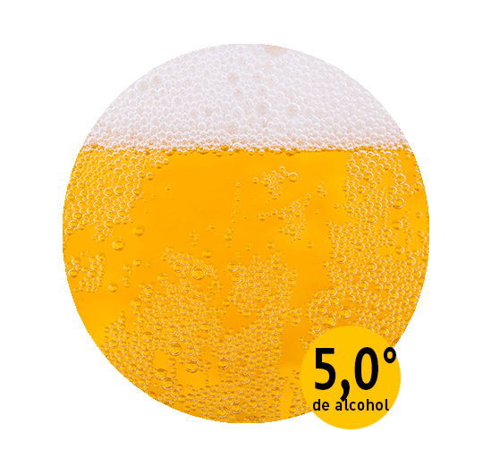 rubia beertruck-min (1).png