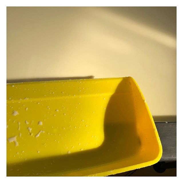 Floculation.. for the nation #isleofwight #isleofwightcheese #isleofwightbluecheese #isleofwightblue #morninglight #milk #cheesemaking #cheese