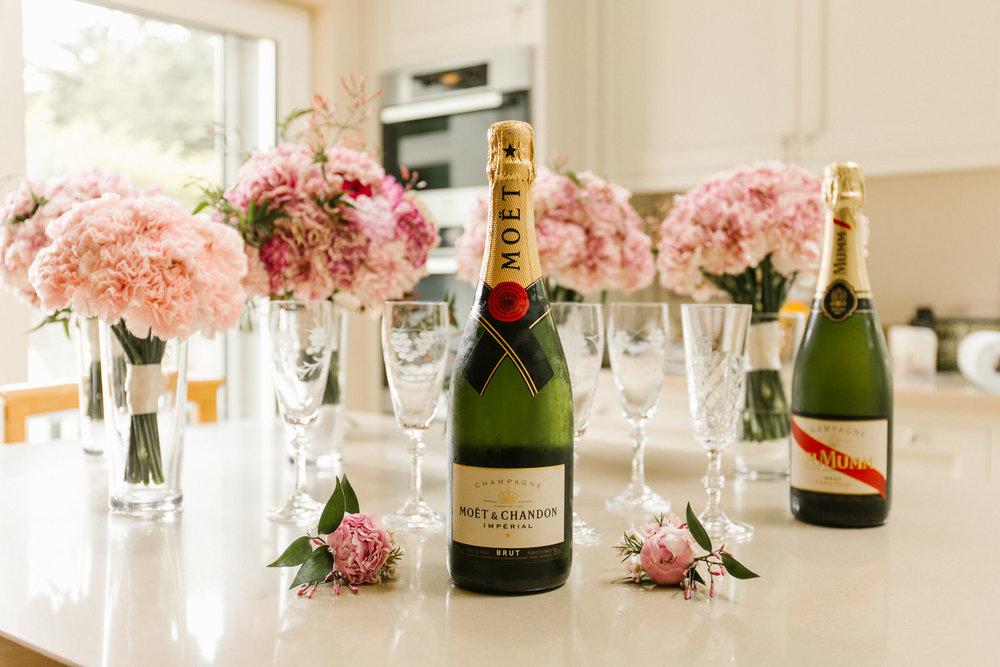 Tinakilly-wedding-photographer-roger-kenny_007.jpg