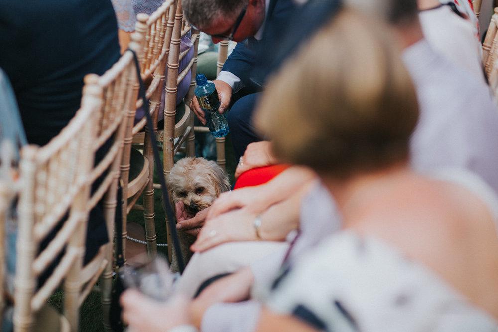 Roger-kenny-wedding-photographer-tinakilly-wicklow-dublin_036.jpg