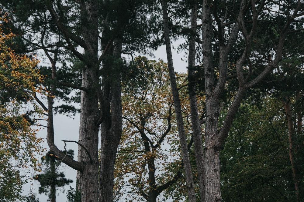 Roger_kenny-christening-photography-fern-house-wicklow-greystones_022.jpg