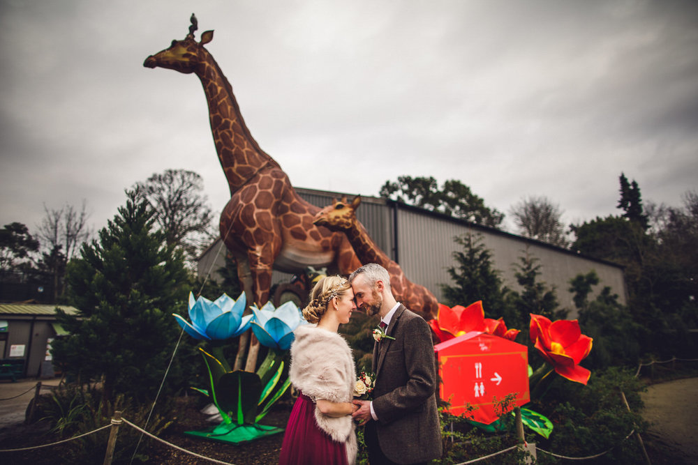Roger_kenny-wedding-photographer-wicklow-dublin-zoo_062.jpg