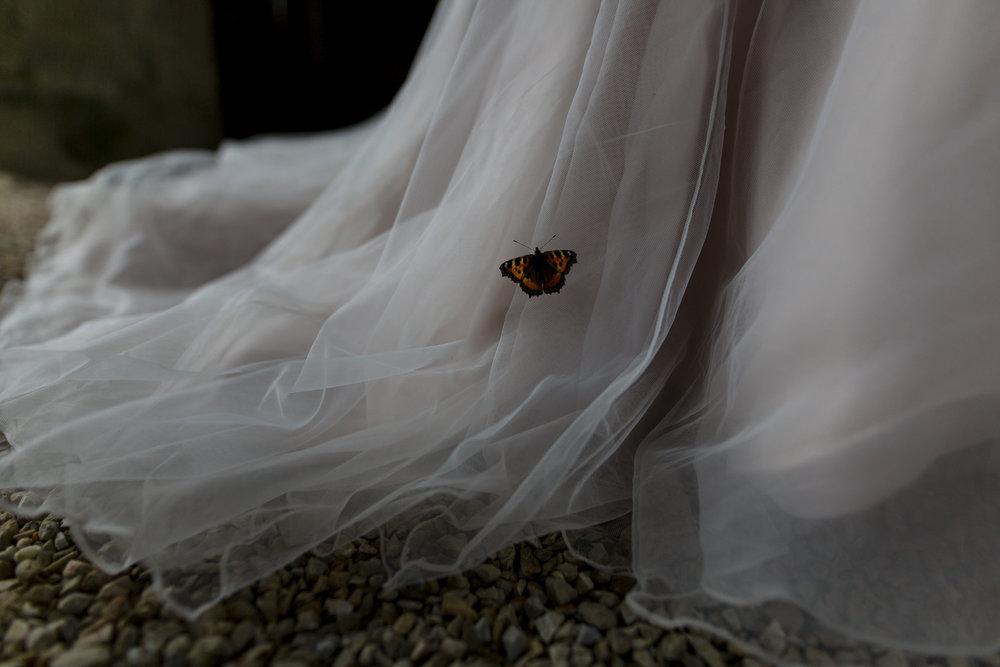 Portrait-room-wedding-photgorapher-roger-kenny-ballybeg-house-036.jpg