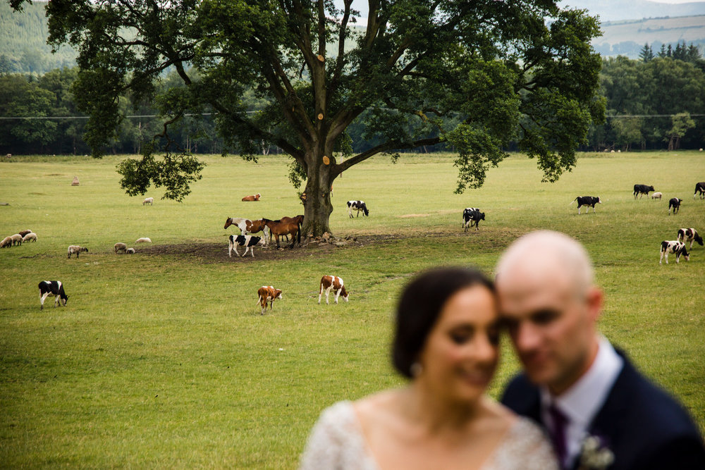 Ballybeg_wedding_photographer_roger_kenny_portrait-room_Ireland_108.jpg