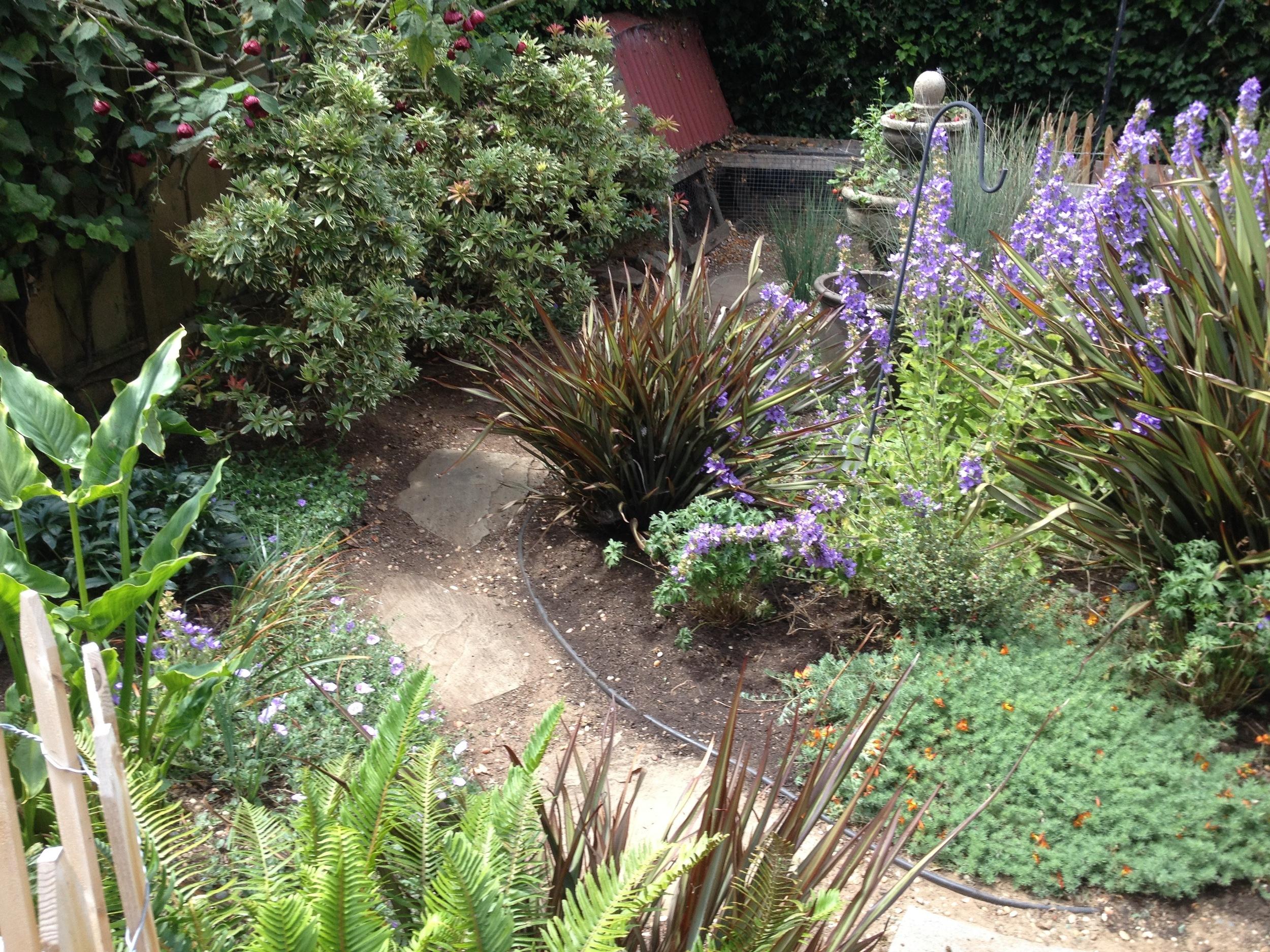 Pretty Excelsior Garden Ideas - Landscaping Ideas for Backyard ...
