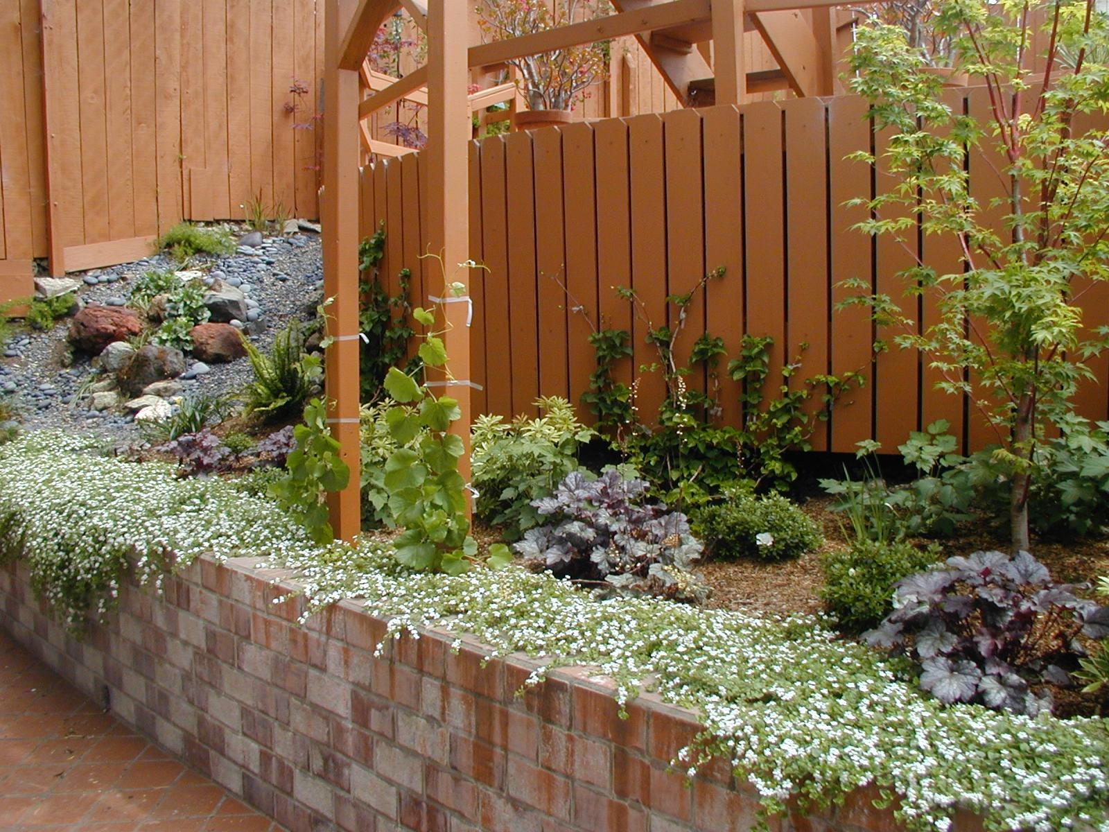 Wild Sage Gardens