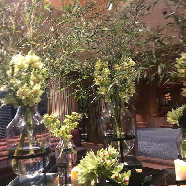 Beautiful orchids at #fourseasonsboston