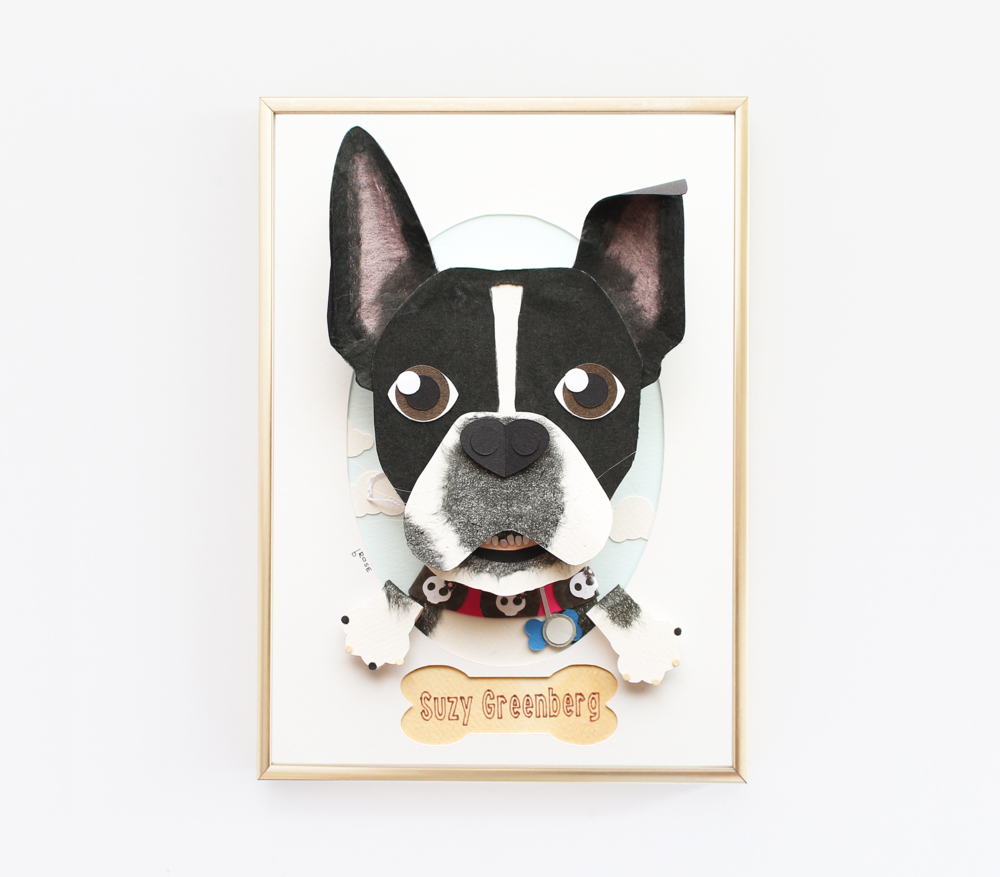 BostonTerrierportrait.png