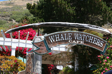 Whale Watchers Cafe...Good Eats..