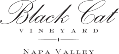 Black Cat Vineyard