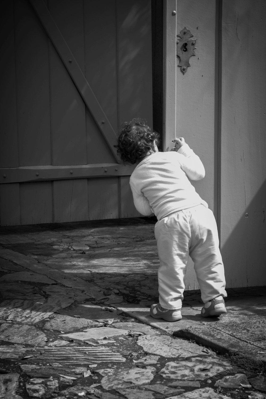 A Curiosidade