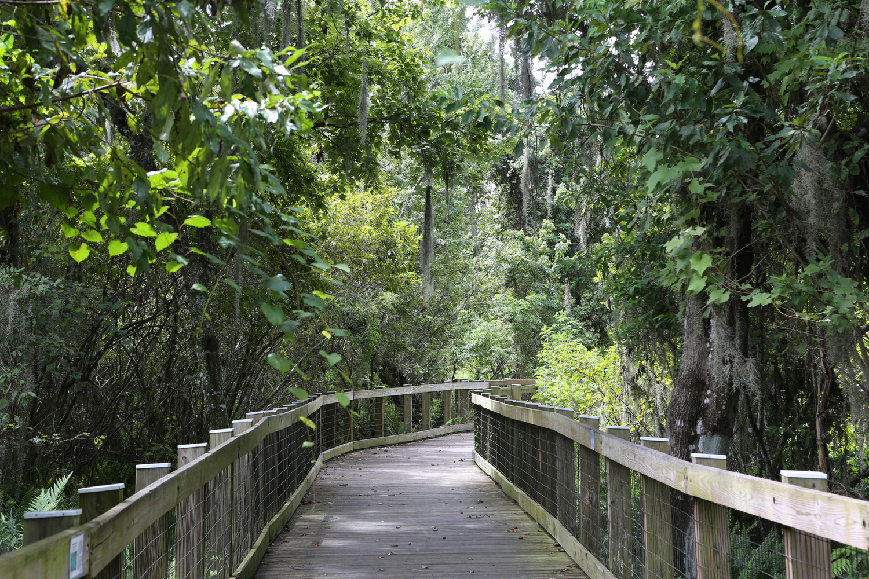 boardwalk u2014 oakland nature preserve
