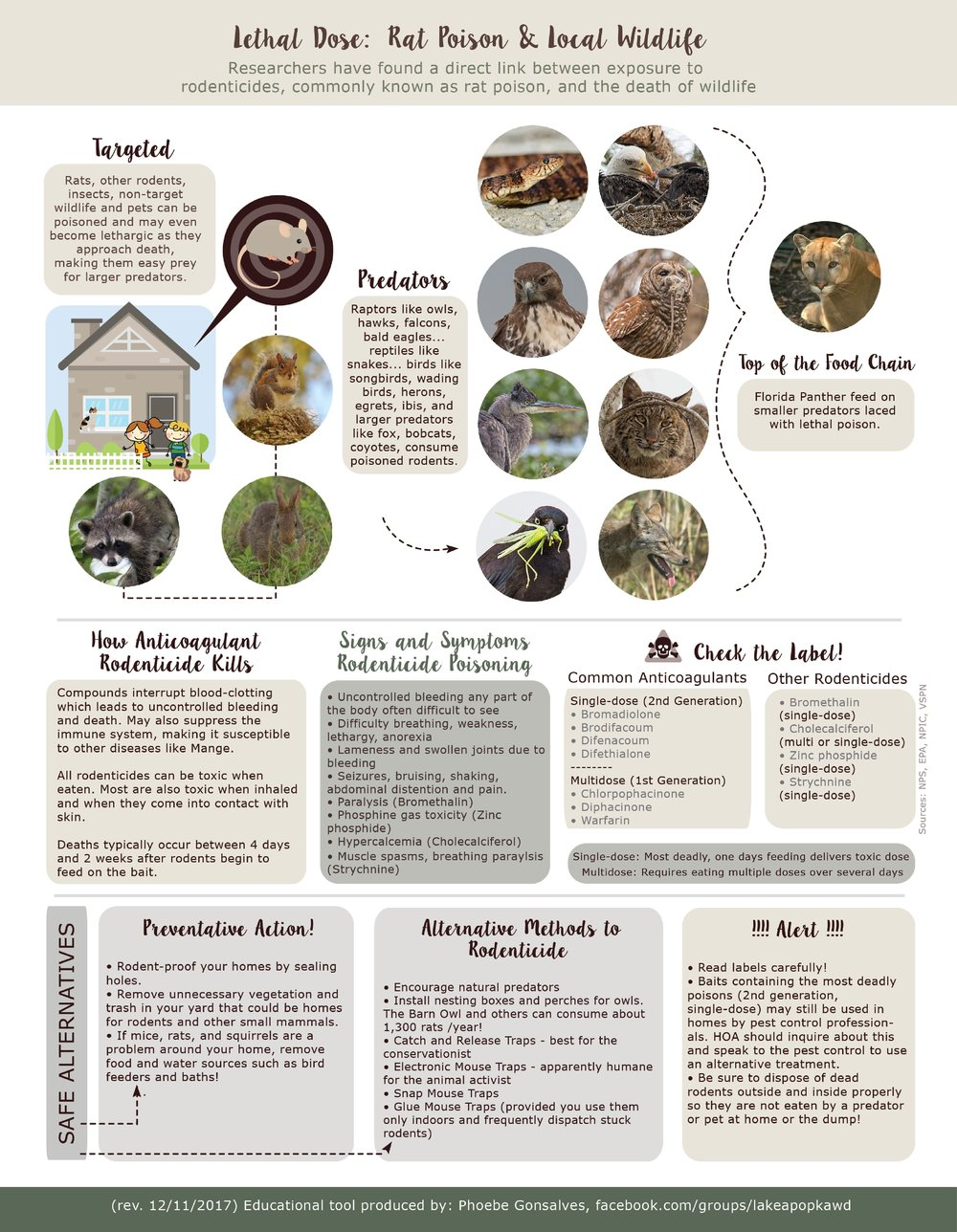 Rodenticide Teach Sheet by Phoebe Gonsalves