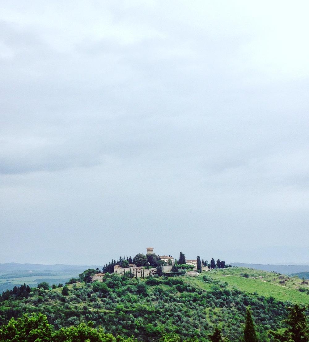 Old school vineyard - 11th Century Castillo