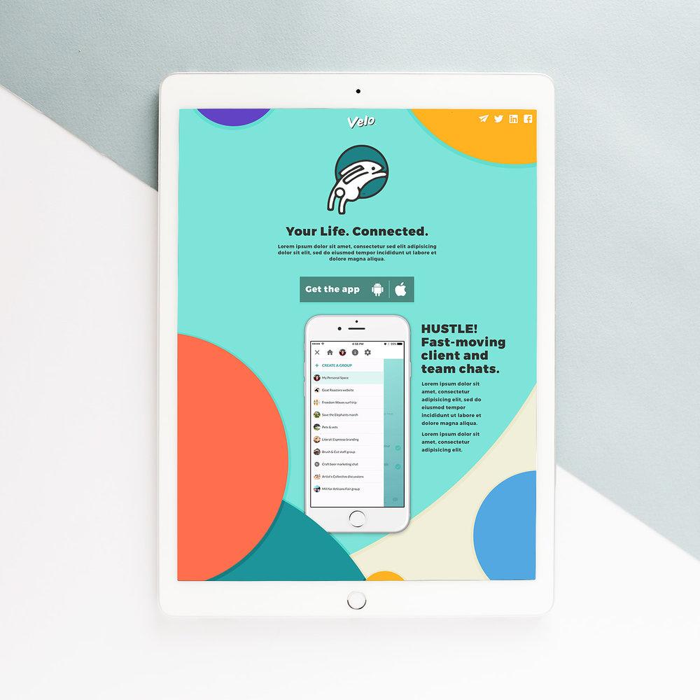 VELO-website.jpg