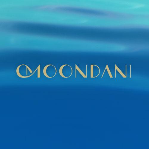moondani_gallery.jpg