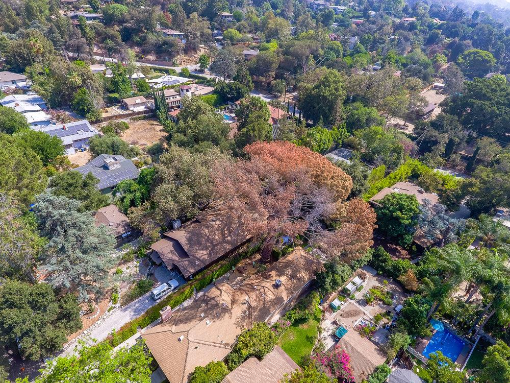 Mariposa Tree Removal Aerial 2-10.jpg