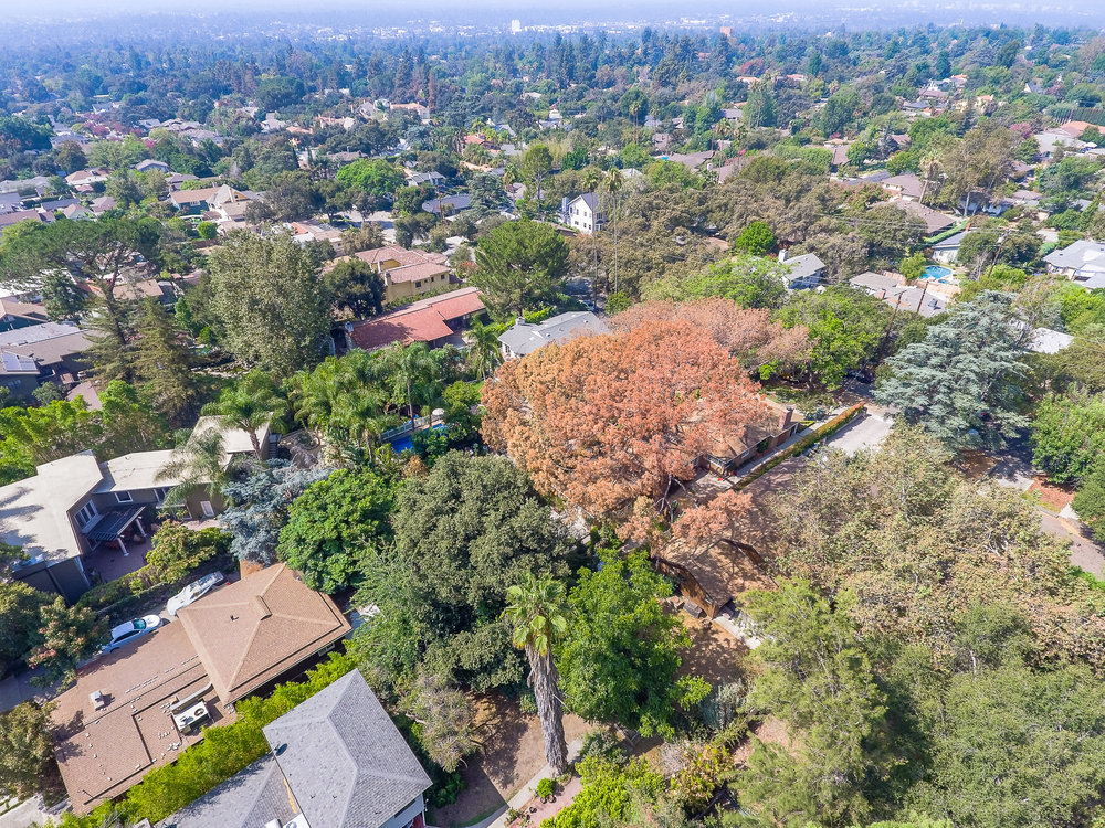 Mariposa Tree Removal Aerial 2-14.jpg