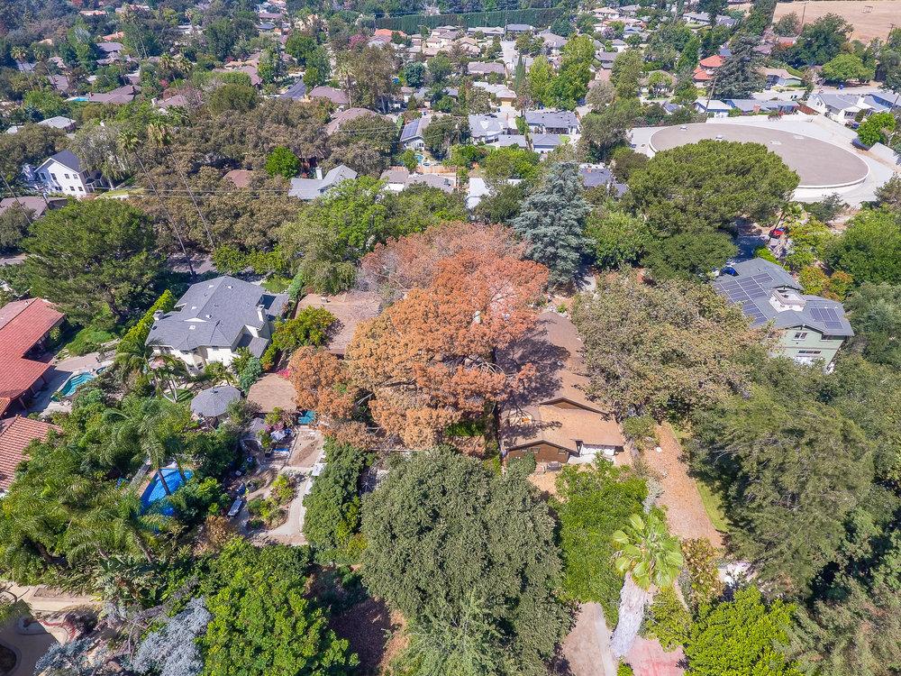 Mariposa Tree Removal Aerial 2-21.jpg