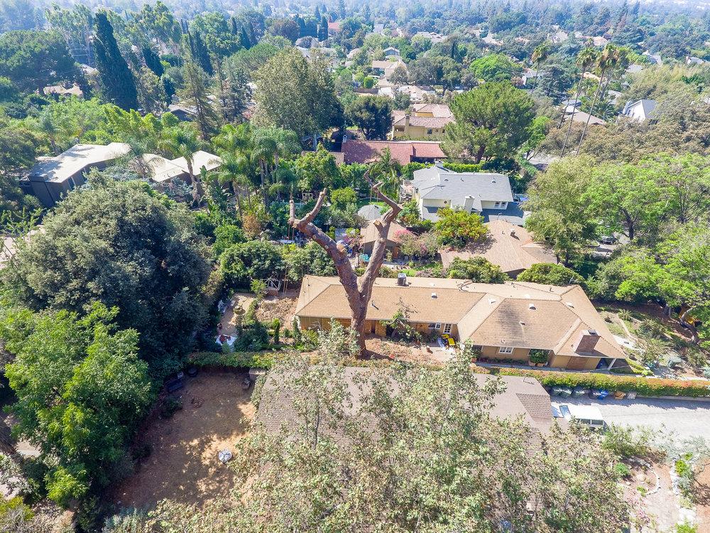 Mariposa Tree Removal Aerial 3-16.jpg