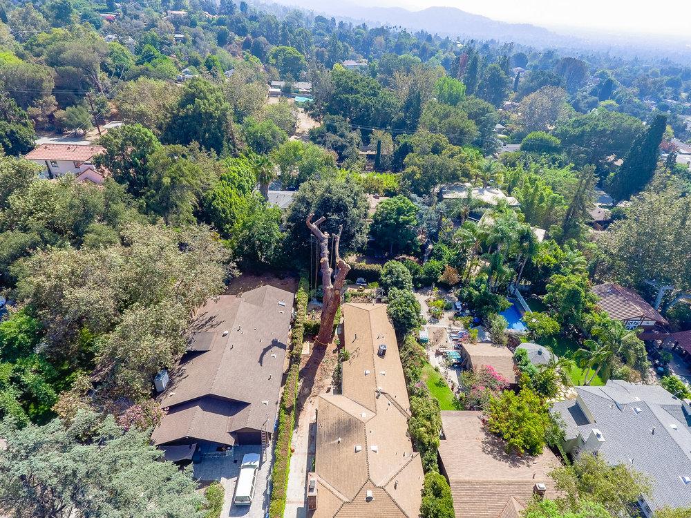 Mariposa Tree Removal Aerial 3-18.jpg