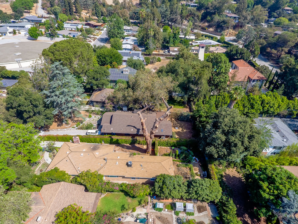 Mariposa Tree Removal Aerial 3-20.jpg
