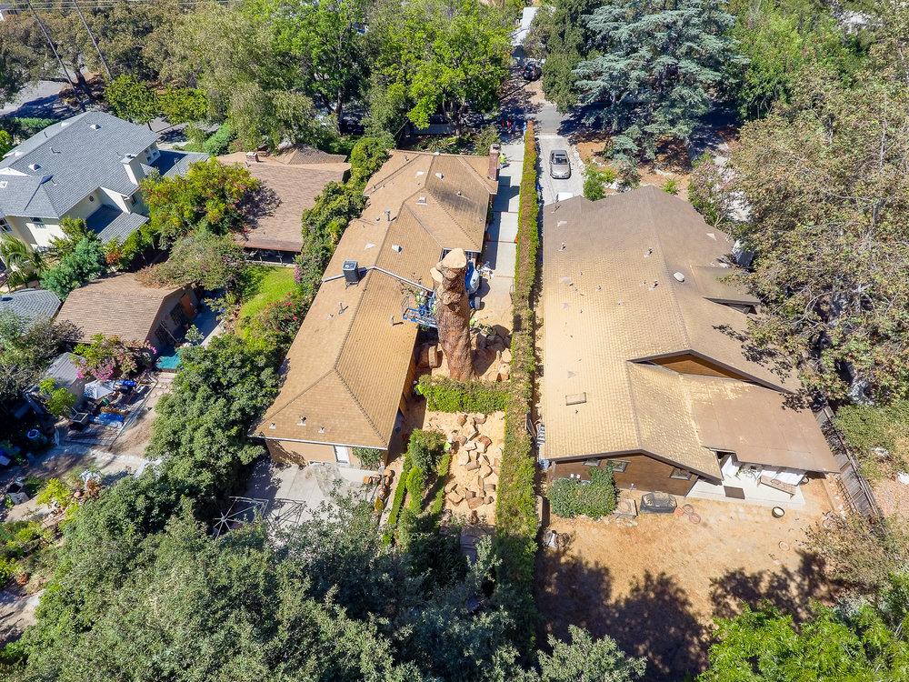 Mariposa Tree Removal Aerial 3-37.jpg