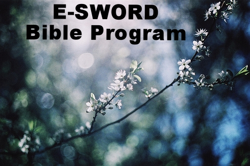 e-Sword Bible Program  is a wonderful FREE Bible program, including commentaries, Bibles, and other resources.