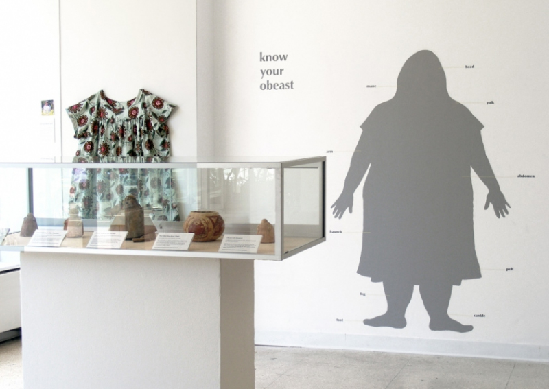 Know Your Obeast (installation view)  2010 ceramic artifacts, obeast anatomy figure, muumuu (obeast pelt), photographs