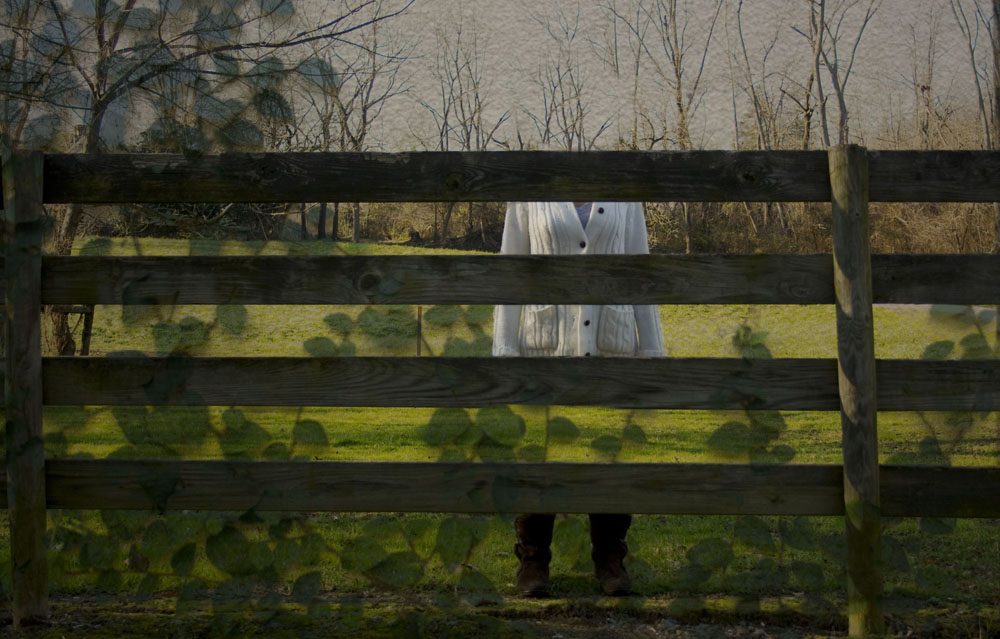 find me behind the fence.jpg