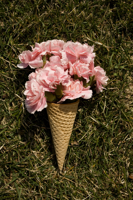 luscious ice cream.jpg