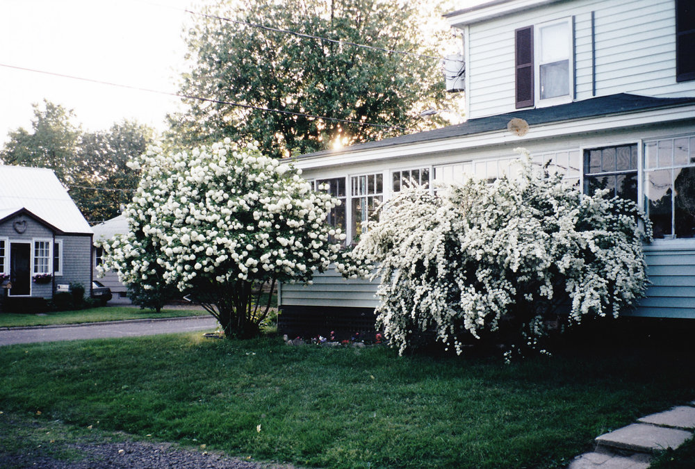 An old photo of my house taken in May, 2000, Morgan's house in the background.